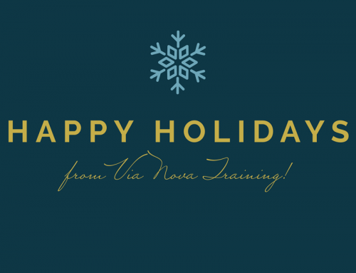 Happy Holidays from Via Nova Training ❄️