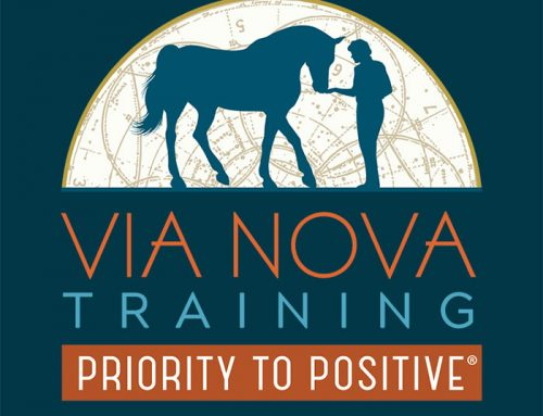 Via Nova Training is Our New Name!