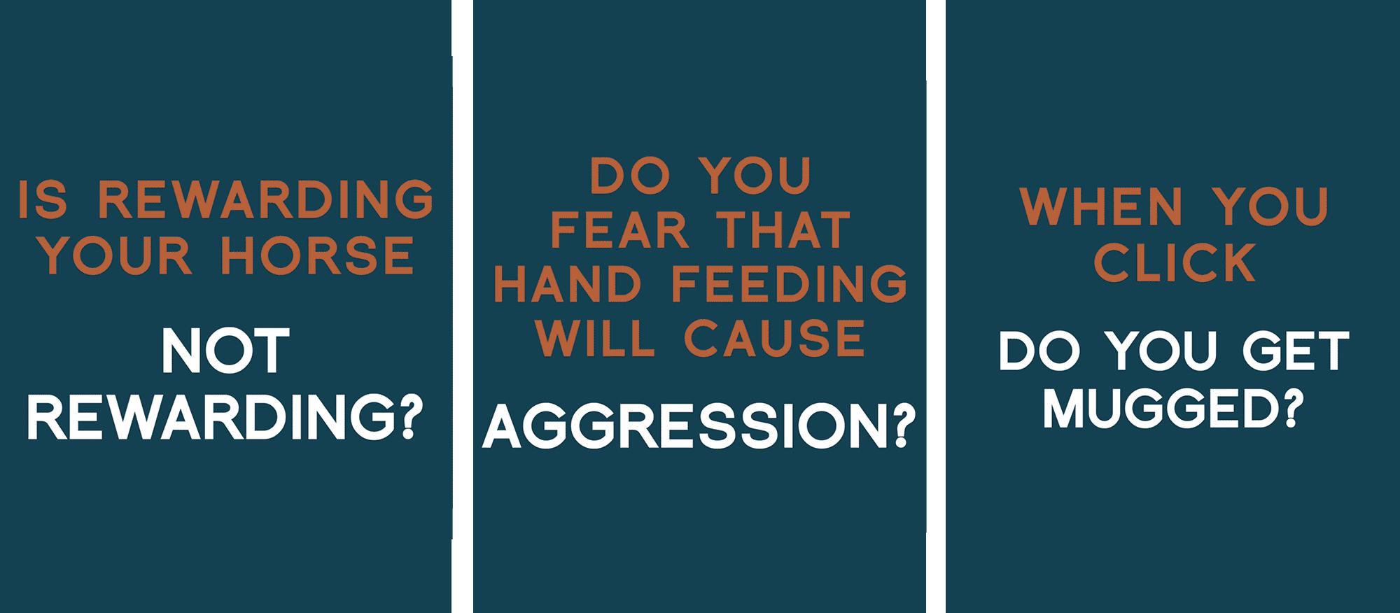hand feeding safely
