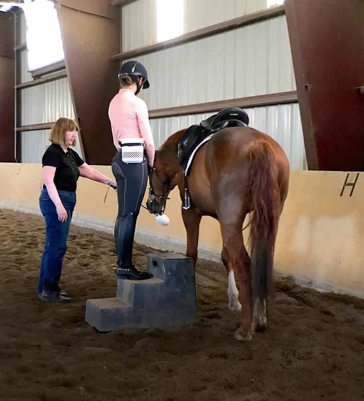 Training with a mounting block at Terra Nova Equestrian Training Center in Santa Fe, NM