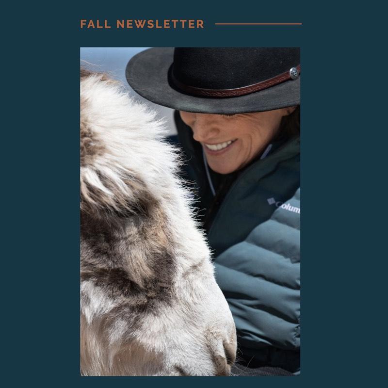 via nova november news thumb