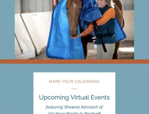 Keeping it Positive: MORE Virtual Events This Month