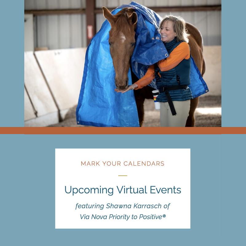 virtual positive reinforcement events